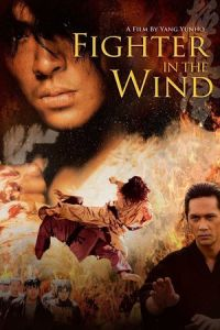 Fighter in the Wind (Baramui paiteo) (2004)